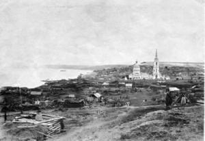 Село Новодевичье. 1894–1895 гг.